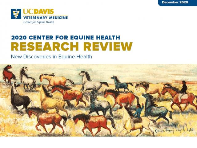 cover of 2020 Research Review